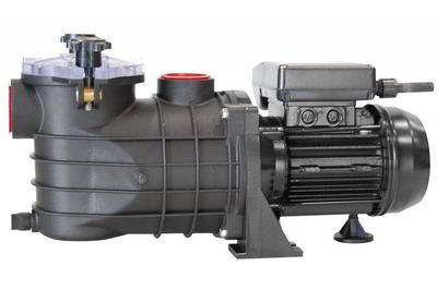Насос c префильтром  8,2 (6,2)м3/час, 0,37кВт, 220 В Micro.2-50 Bombas PSH