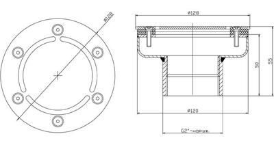 "Форсунка донная, д. 120 мм, плёнка, 2"" НР, AISI-304 Xenozone"